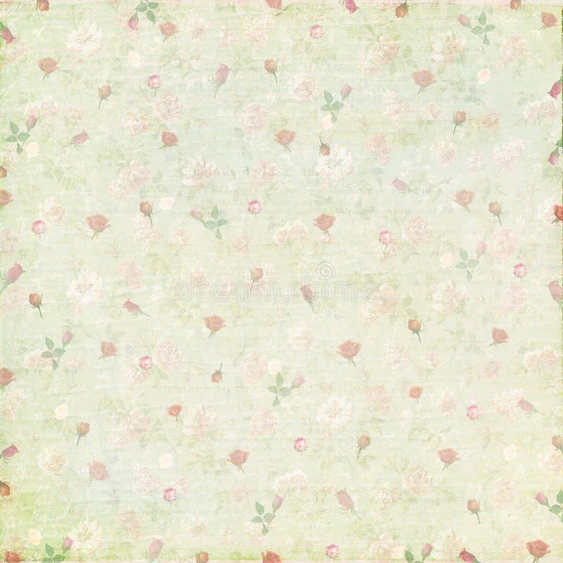 För rospapper för tappning sjaskig bakgrund royaltyfri foto