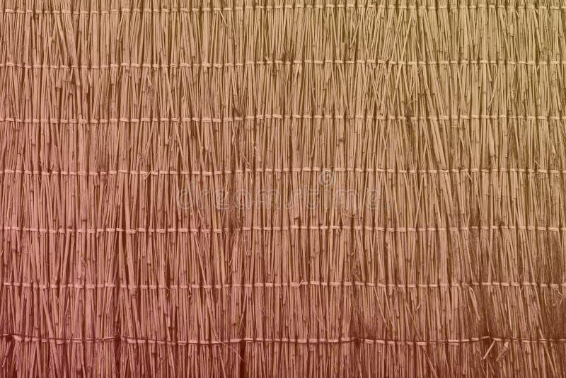 För rottingstaket för limefrukt gammal textur - gullig abstrakt fotobakgrund royaltyfri foto