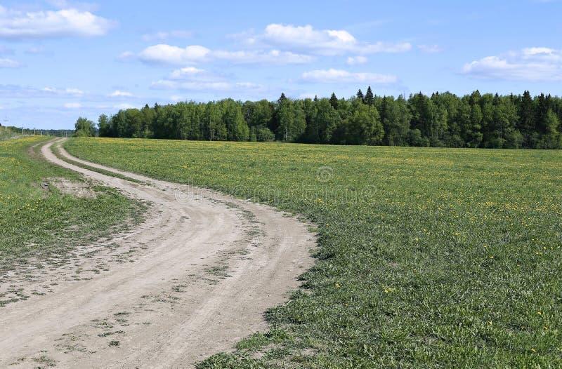 för ryazan för väg för region för landsdagfält varm åska för storm fjäder arkivbild