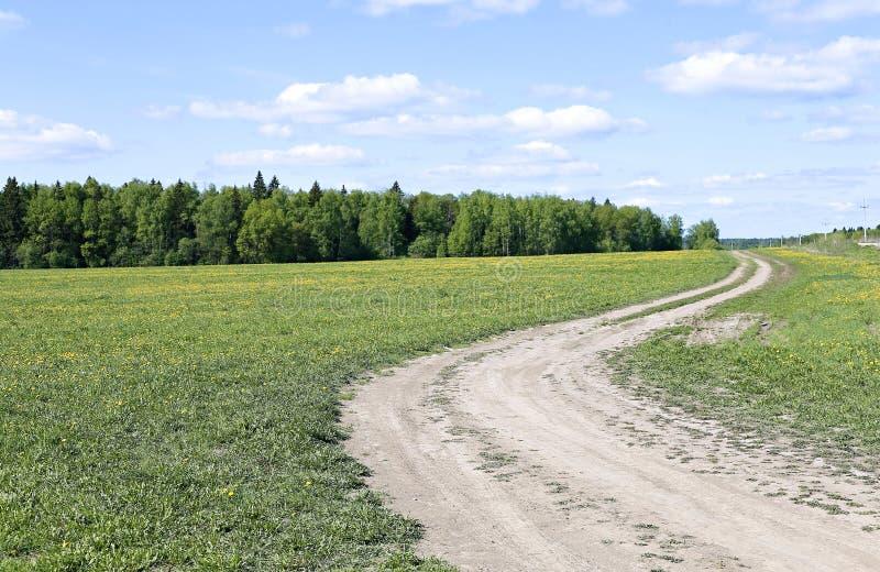 för ryazan för väg för region för landsdagfält varm åska för storm fjäder royaltyfri fotografi
