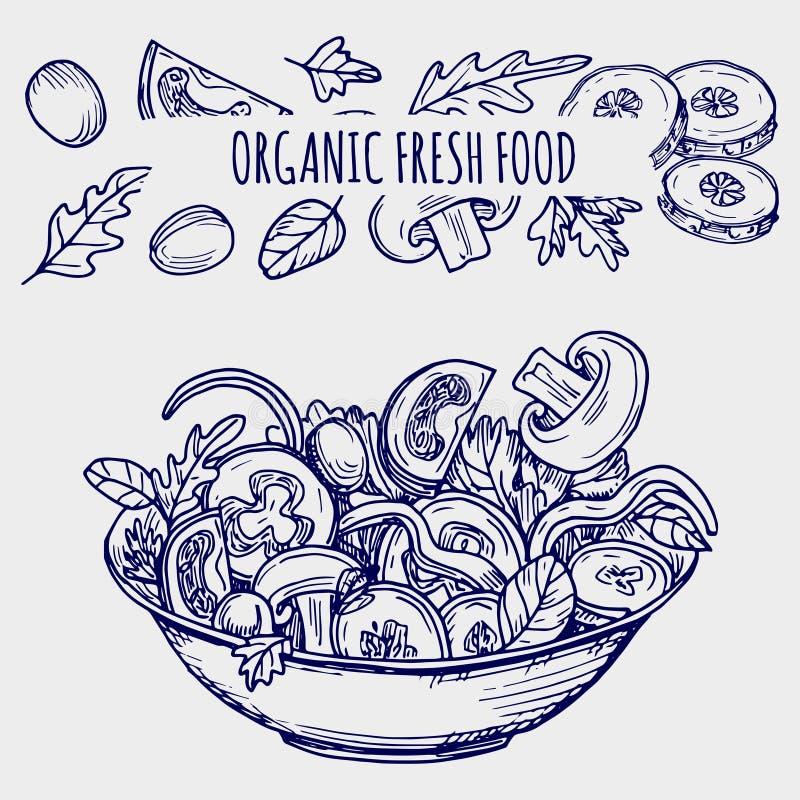För salladbunke för hand utdragen illustration för vektor och för grönsaker healhty mat vektor illustrationer