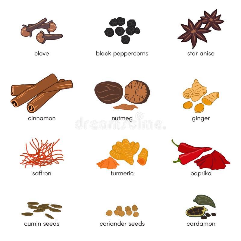för scompillusion för 12 krydda design för vektor fastställd stock illustrationer