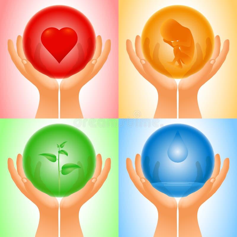 För sfärhjärta för fastställd hand genomskinligt vatten för grodd för embryo vektor illustrationer