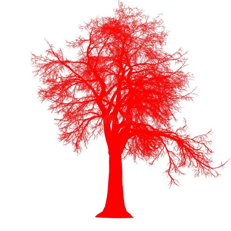 För sidosikten för trädet isolerade den avlövade konturn - rött - vektorn royaltyfri illustrationer