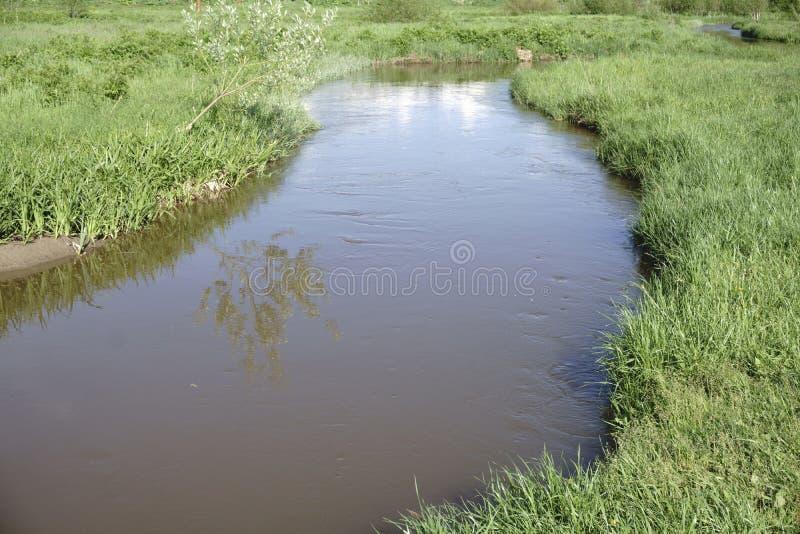 för skogberg för sammansättning djup flod för natur arkivfoto