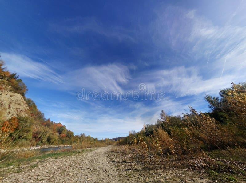 för skogliggande för höst färgrikt berg arkivfoto