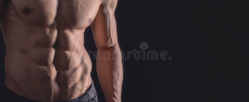 För slut perfekt abs upp Sexig muskulös manlig torso sex packar royaltyfri bild