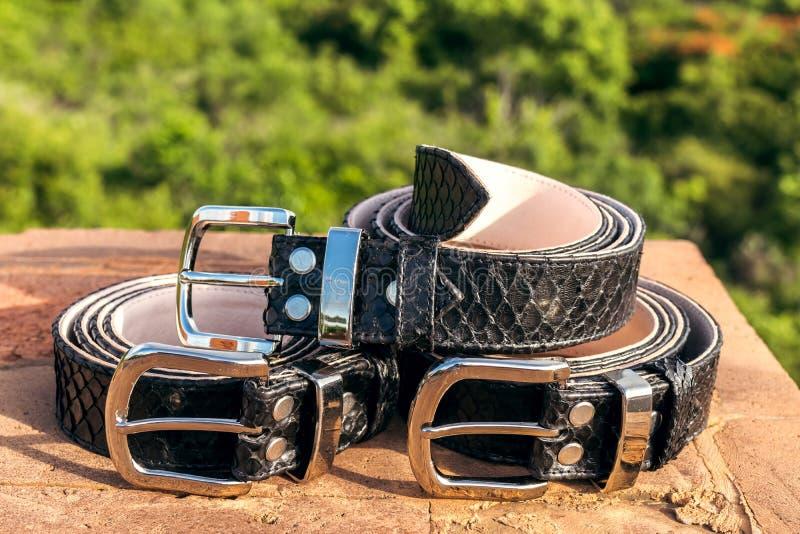 För snakeskinläder för mode lyxiga bälten utomhus Pytonormbälten på en tropisk bakgrund fotografering för bildbyråer