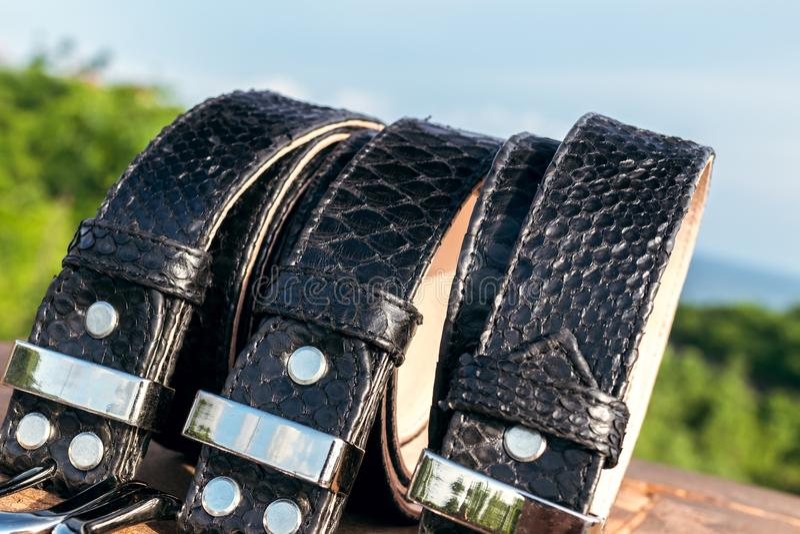 För snakeskinläder för mode lyxiga bälten utomhus Pytonormbälten på en tropisk bakgrund arkivfoton