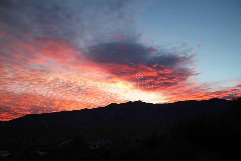 För sockervaddgryning för varma rosa färger och apelsinmoln över bergen i Tucson Arizona royaltyfri fotografi