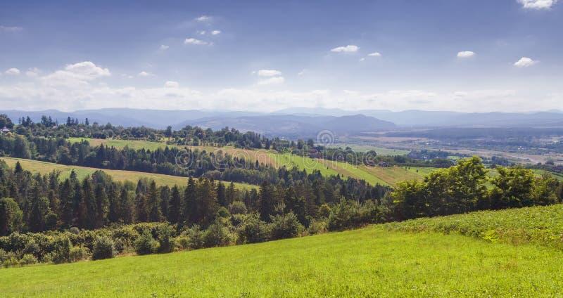 För sommareftermiddag för Carpathian berg landskap fotografering för bildbyråer