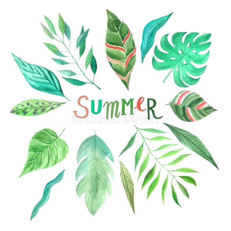 För sommargräsplan för vattenfärg tropisk uppsättning för sidor stock illustrationer