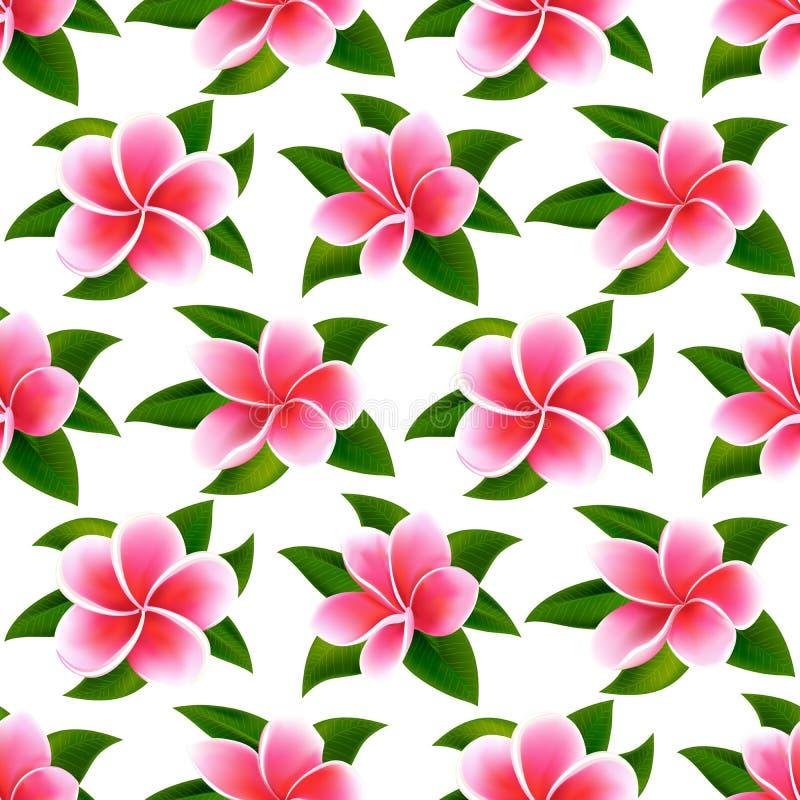 För sommarmodell för härliga tropiska blommor sömlös blom- bakgrund för vektor vektor illustrationer