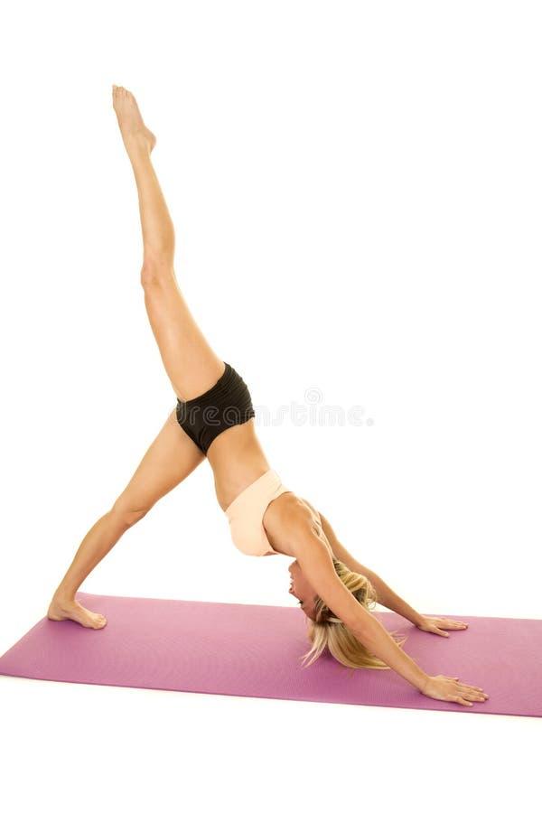 För sportbehå för kvinna dog rosa yoga ner upp benet royaltyfria foton