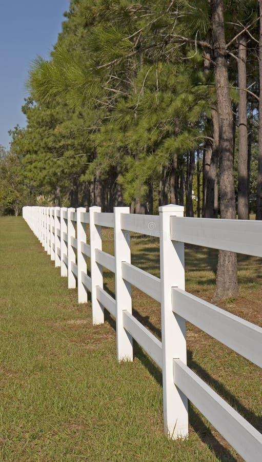 för staket white long fotografering för bildbyråer