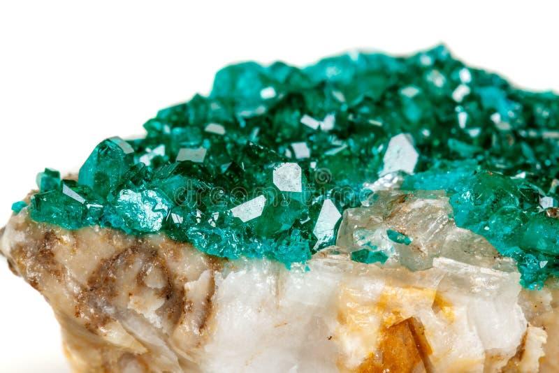 För stenDioptase för makro mineralisk koppar silikat på en vit backgrou royaltyfri foto