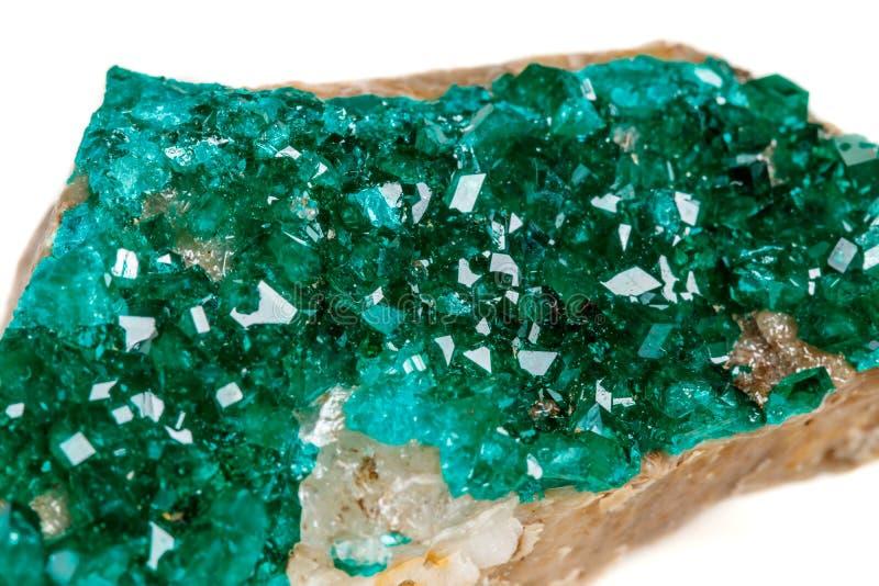 För stenDioptase för makro mineralisk koppar silikat på en vit backgrou fotografering för bildbyråer