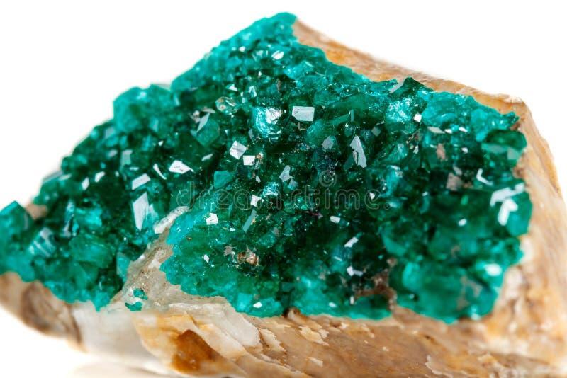 För stenDioptase för makro mineralisk koppar silikat på en vit backgrou arkivfoton