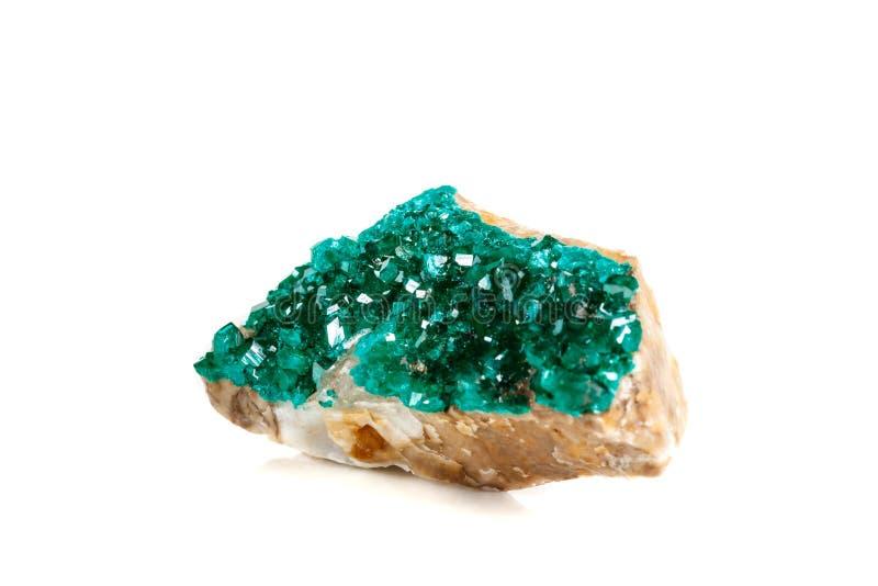 För stenDioptase för makro mineralisk koppar silikat på en vit backgrou royaltyfria foton