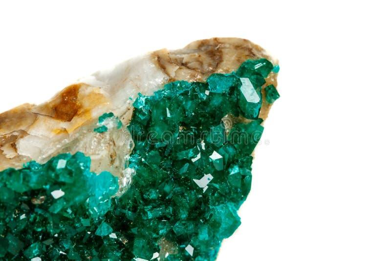 För stenDioptase för makro mineralisk koppar silikat på en vit backgrou royaltyfria bilder