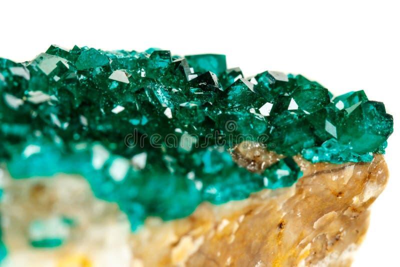 För stenDioptase för makro mineralisk koppar silikat på en vit backgrou arkivfoto