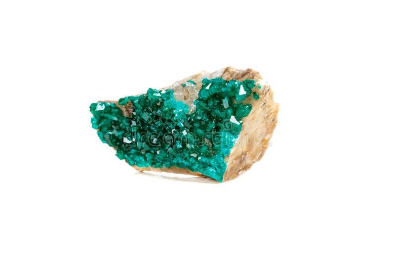 För stenDioptase för makro mineralisk koppar silikat på en vit backgrou arkivbild