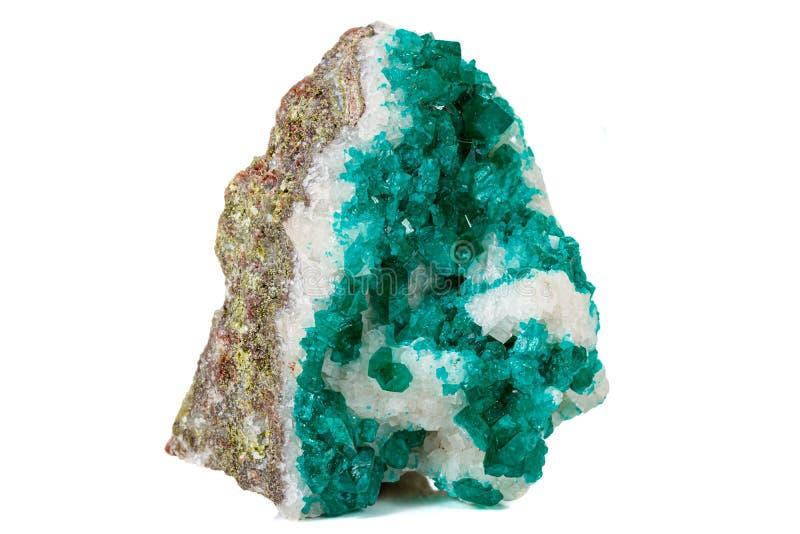 För stenDioptase för makro mineralisk koppar silikat på en vit bakgrund arkivfoto