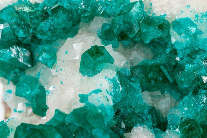 För stenDioptase för makro mineralisk koppar silikat på en vit bakgrund fotografering för bildbyråer