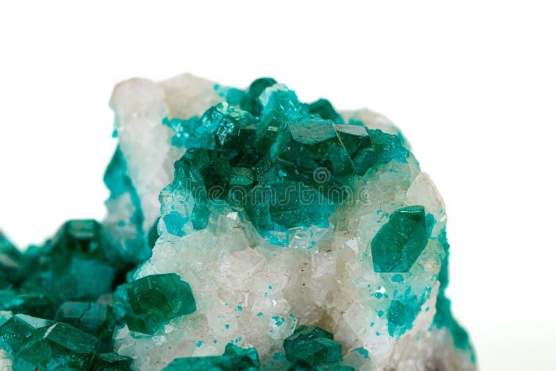 För stenDioptase för makro mineralisk koppar silikat på en vit bakgrund royaltyfria foton
