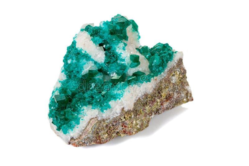 För stenDioptase för makro mineralisk koppar silikat på en vit bakgrund royaltyfri bild