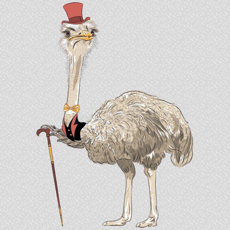 För strutsfågel för vektor rolig hipster stock illustrationer