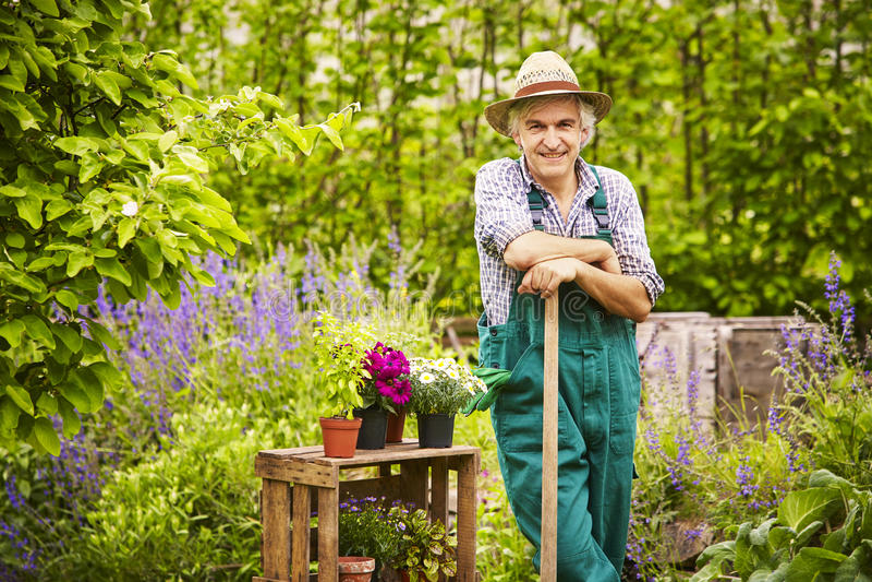 För sugrörhatt för trädgårds- spade stående trädgårdsmästare royaltyfri foto