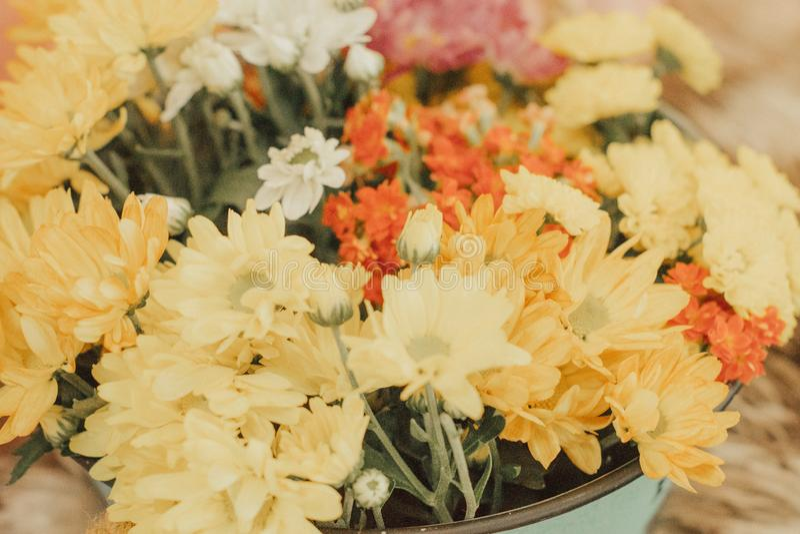 För tabellgarnering för blommor nära härligt naturligt för färgrik plast- detalj för objekt arkivfoton
