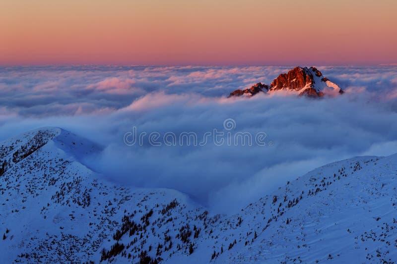 För Tatras för vinter hög panorama bergskedja med många maxima och klar himmel Solig dag överst av snöig berg arkivfoto
