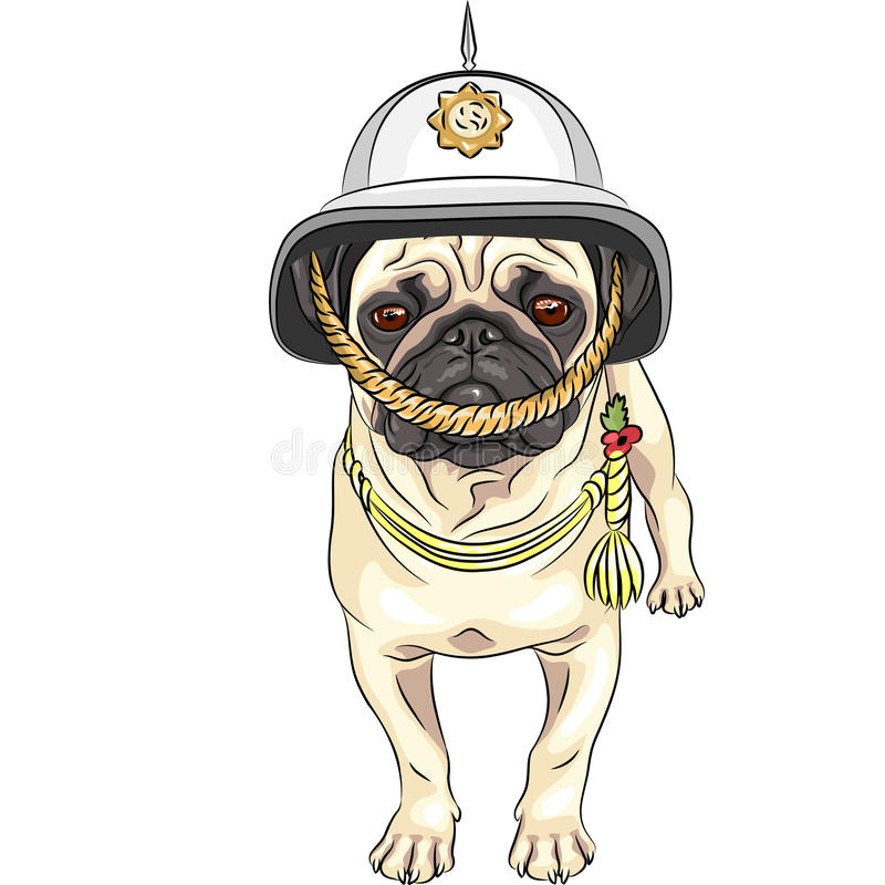 För tecknad filmhund för vektor rolig mops i den brittiska hjälmen royaltyfri illustrationer