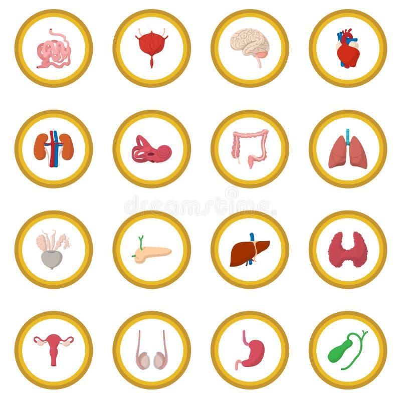 För tecknad filmsymbol för inre organ cirkel royaltyfri illustrationer