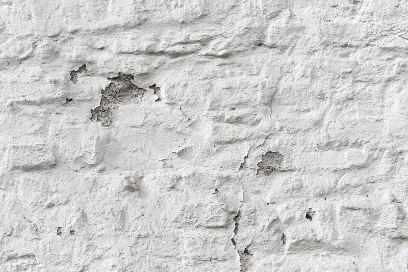 För tegelstenvägg för skalning vit textur för grunge arkivbilder
