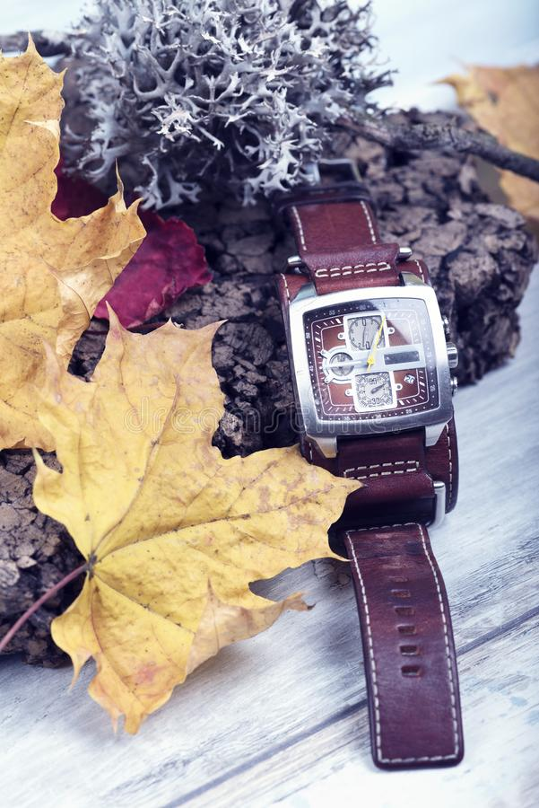 För Tid för armbandsur begreppsmässig Lichen Hour Zone Cork Leather för säsong för kalender passerande rem arkivfoto