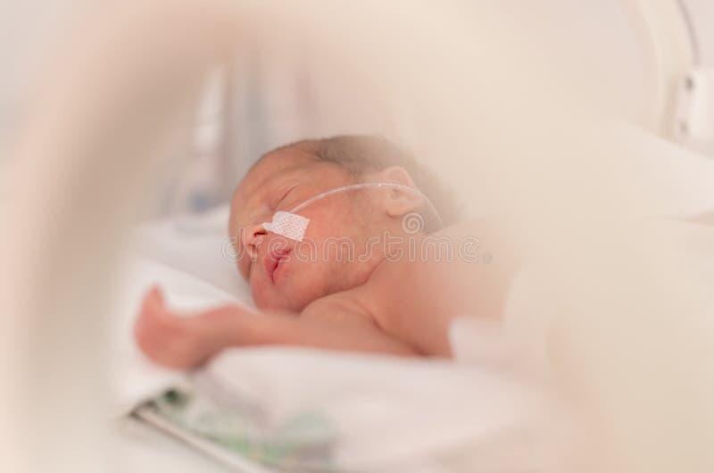 För tidigt nyfött behandla som ett barn flickan royaltyfria bilder
