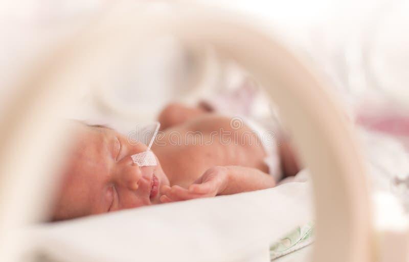 För tidigt nyfött behandla som ett barn flickan royaltyfri foto