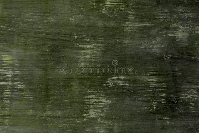 För timmervägg för idérik limefrukt sjaskig textur - trevlig abstrakt fotobakgrund royaltyfri foto