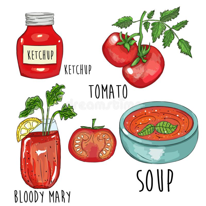 För tomatsamling för hand utdragen illustration royaltyfri illustrationer