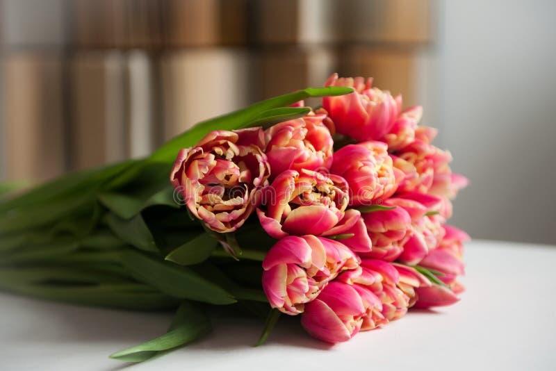 För tulpanblommor för vår rosa bukett fotografering för bildbyråer