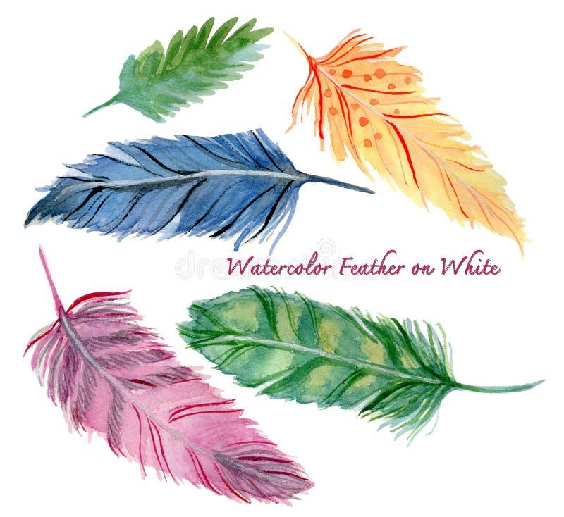För utdragna uppsättning för fjäder vattenfärgmålningar för hand söt abstrakt vektor illustrationer