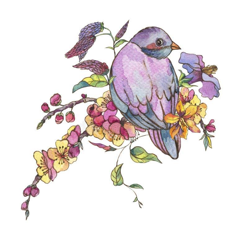 För vårhälsning för vattenfärg blom- kort, rosa blommande filialnolla royaltyfri illustrationer