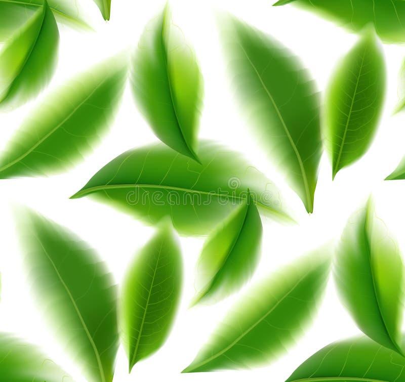 För vektornatur för gröna teblad sömlös bakgrund royaltyfri illustrationer