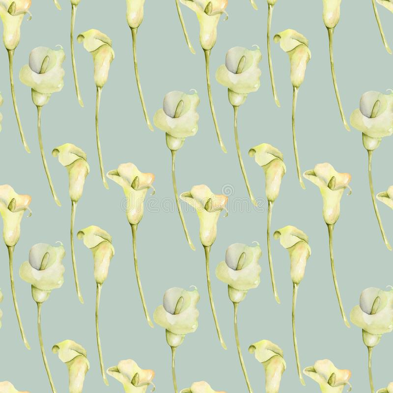 För vita sömlös modell callasblommor för vattenfärg royaltyfri illustrationer