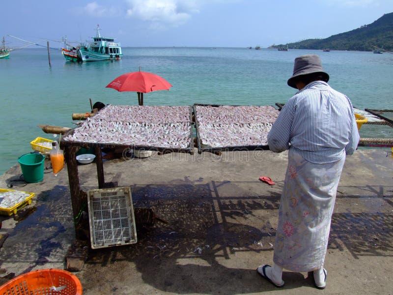 förbereda den havs- thai thailand kvinnan royaltyfria foton