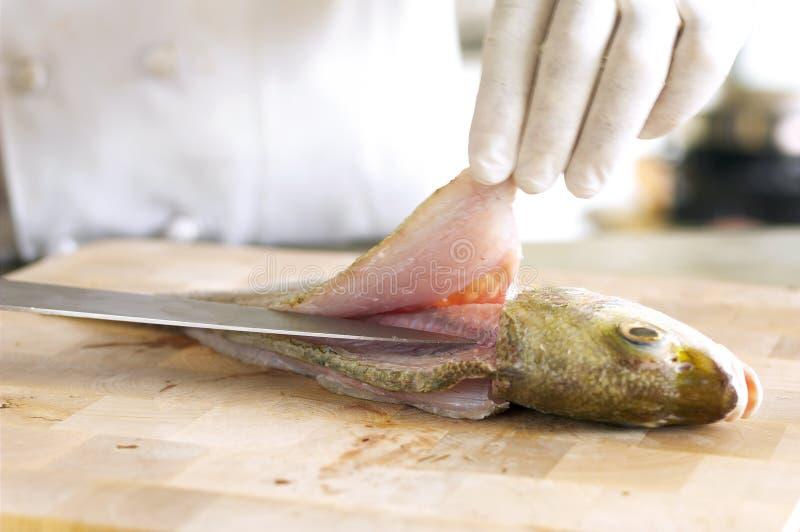 förbereda sig för fisk royaltyfri fotografi