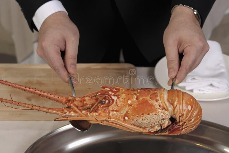 förbereda sig för hummer som är spiny arkivbild